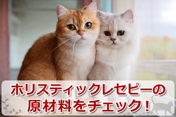 日本の猫専用?ホリスティックレセピーの口コミと原料評価