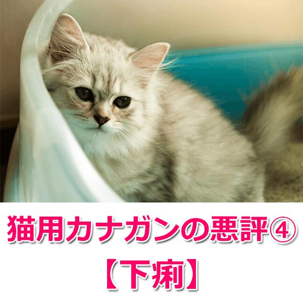 猫用カナガンの悪い口コミ・評判4つを徹底解説