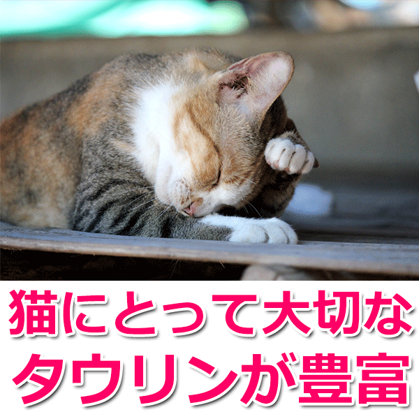 猫にとって大切なタウリンが豊富