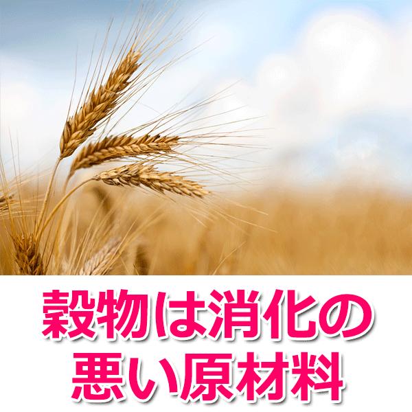 穀物は消化の悪い原材料