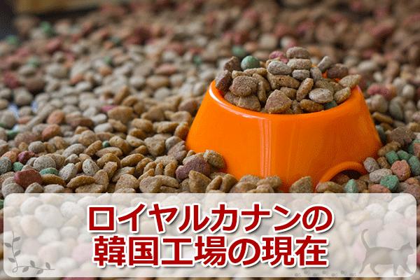 療法食のロイヤルカナンは韓国製?消化器サポートを評価