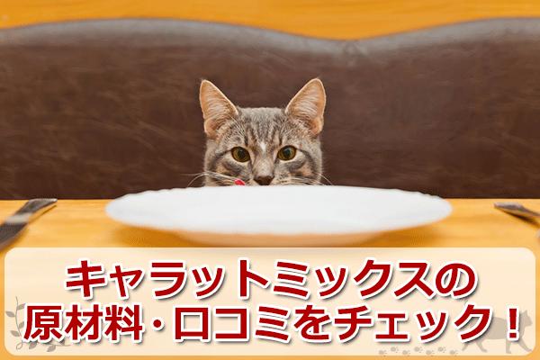 キャラットミックスは安全な猫餌?原材料と評判をチェック