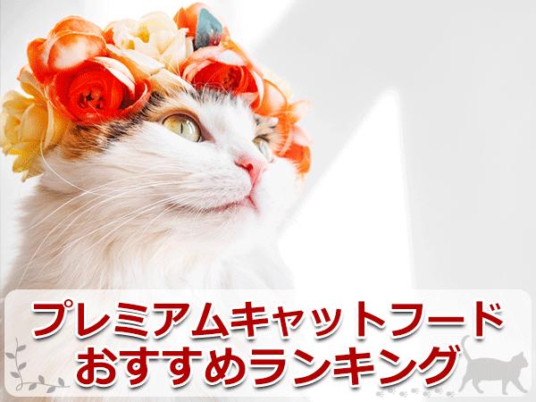 プレミアムキャットフードのおすすめランキング【5選】
